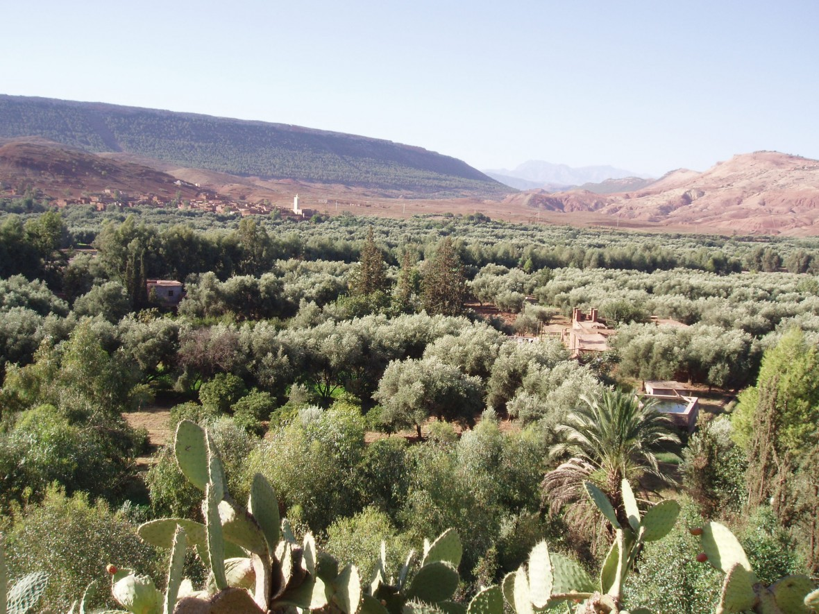 La vallée du Zat, haut Atlas Maroc