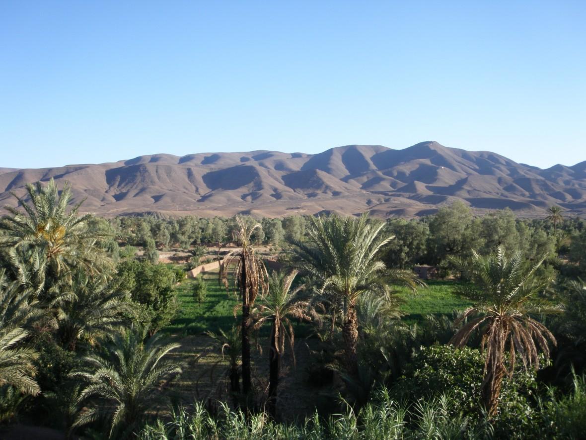 Vallée du drâa - maroc du sud - région Zagora