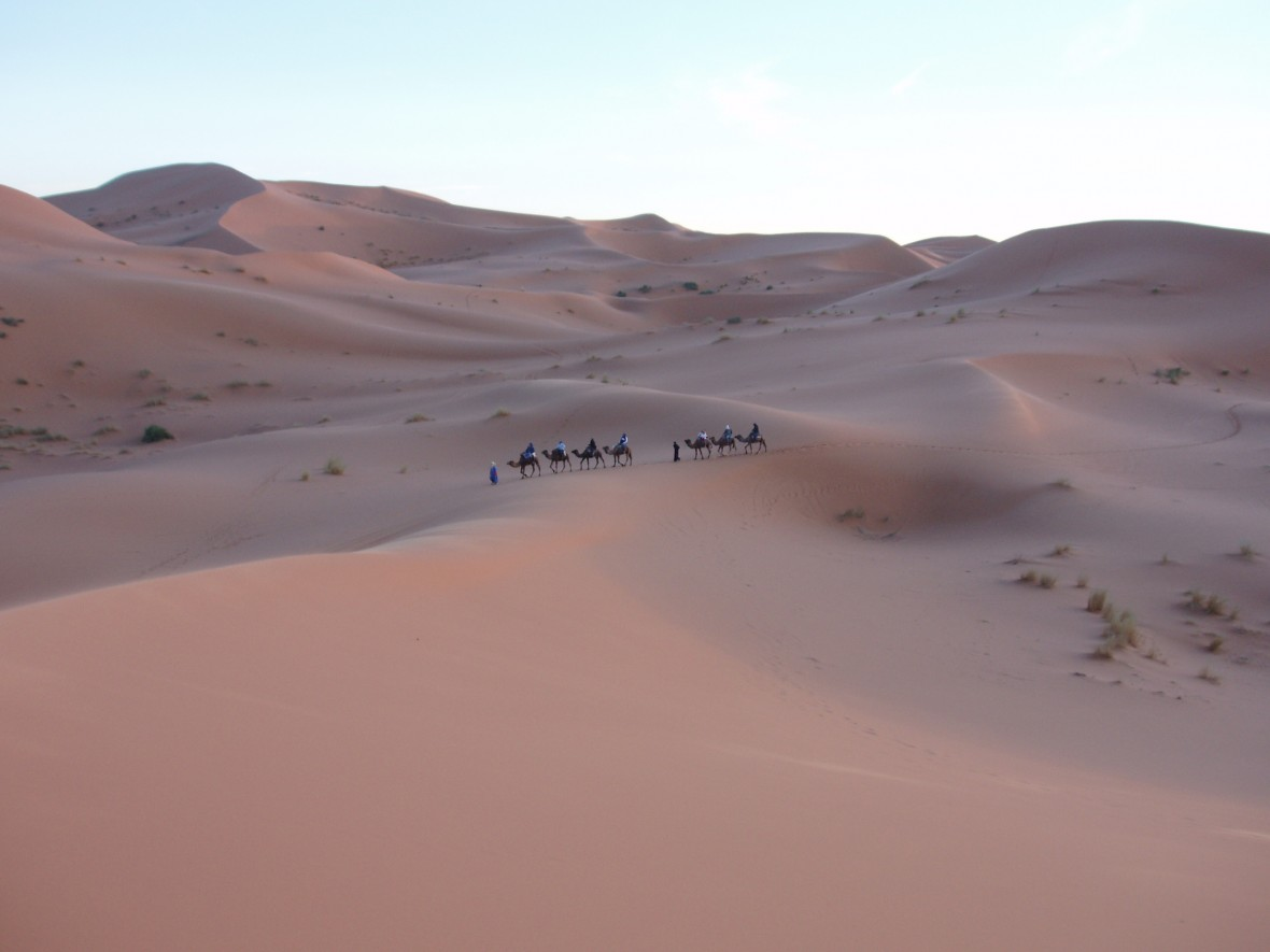 trekking à M'Hamid