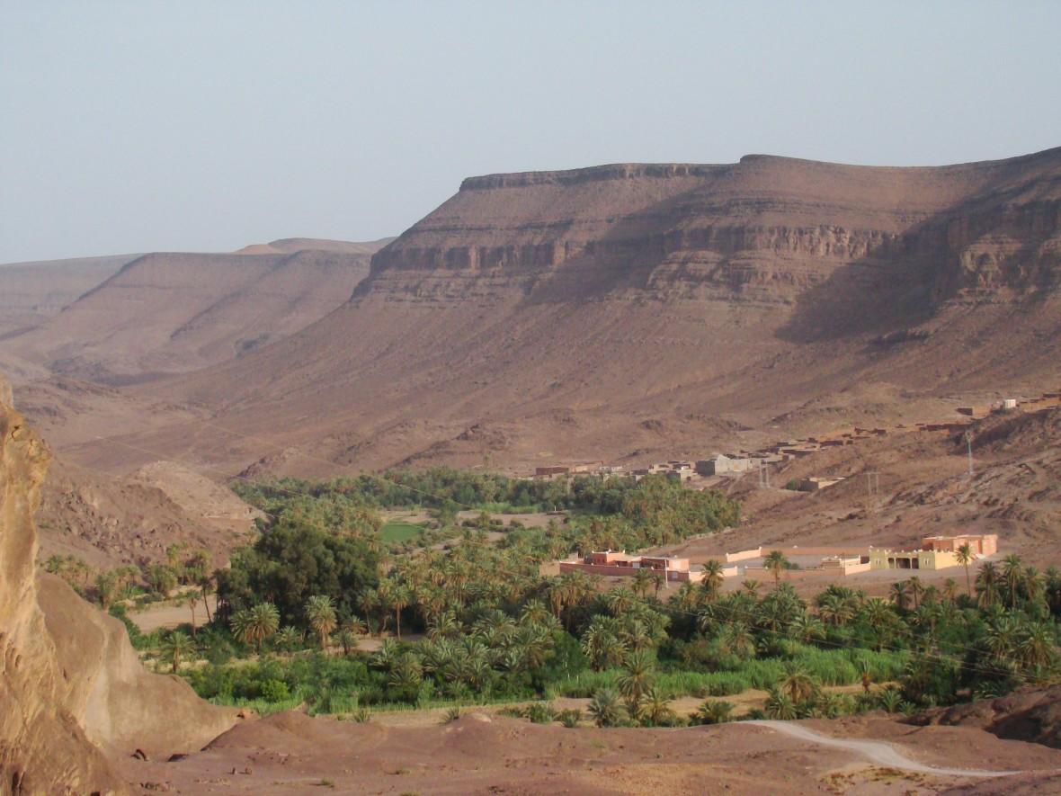désert et oasis