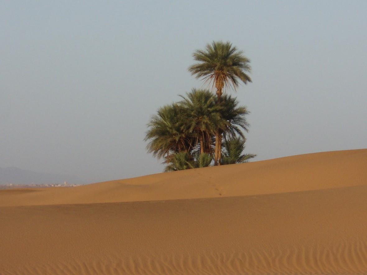 désert Zagora, sud Maroc