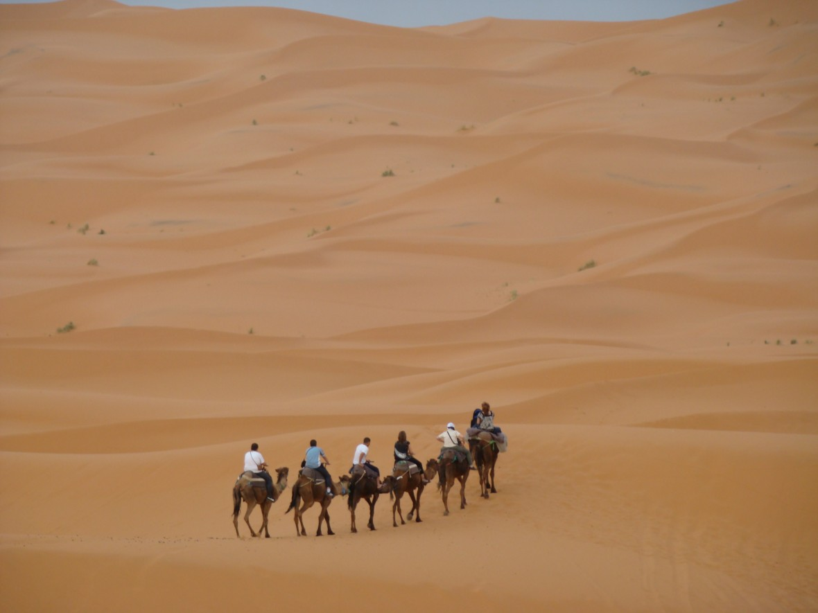 désert et anti-atlas- sud Maroc